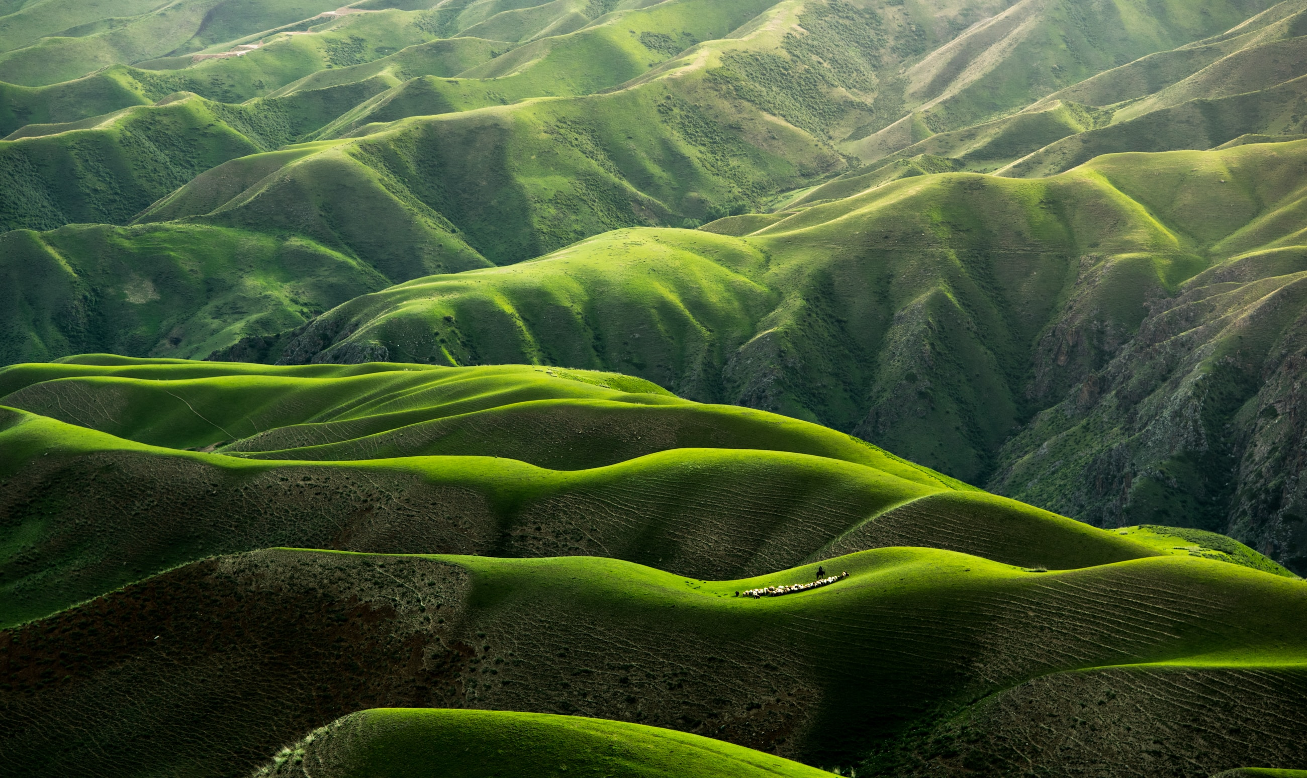 wallpaper Bird's eye view photograph of green mountains