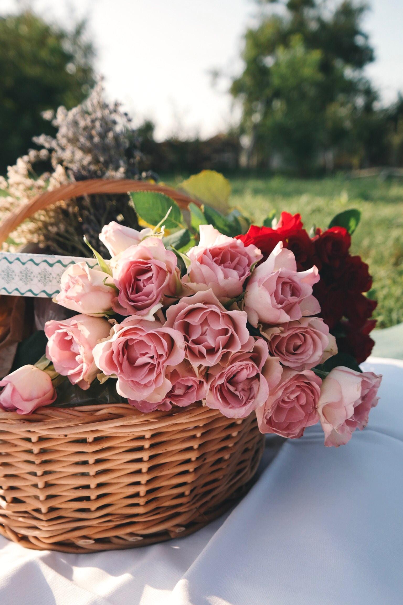 wallpaper Pink rose on wicker basket
