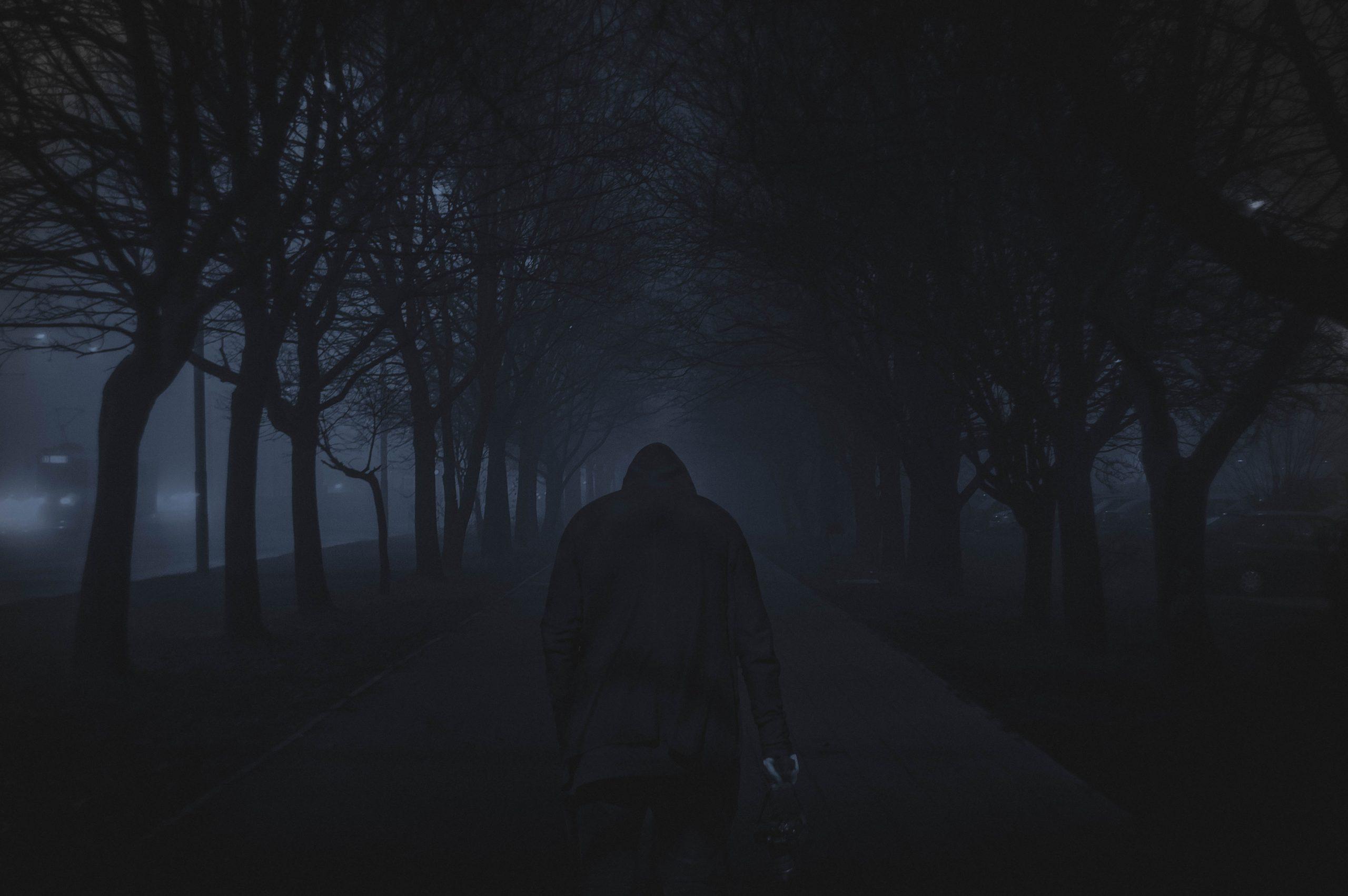 wallpaper Person walking between trees