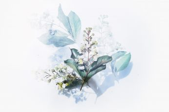 White flowering plant artwork