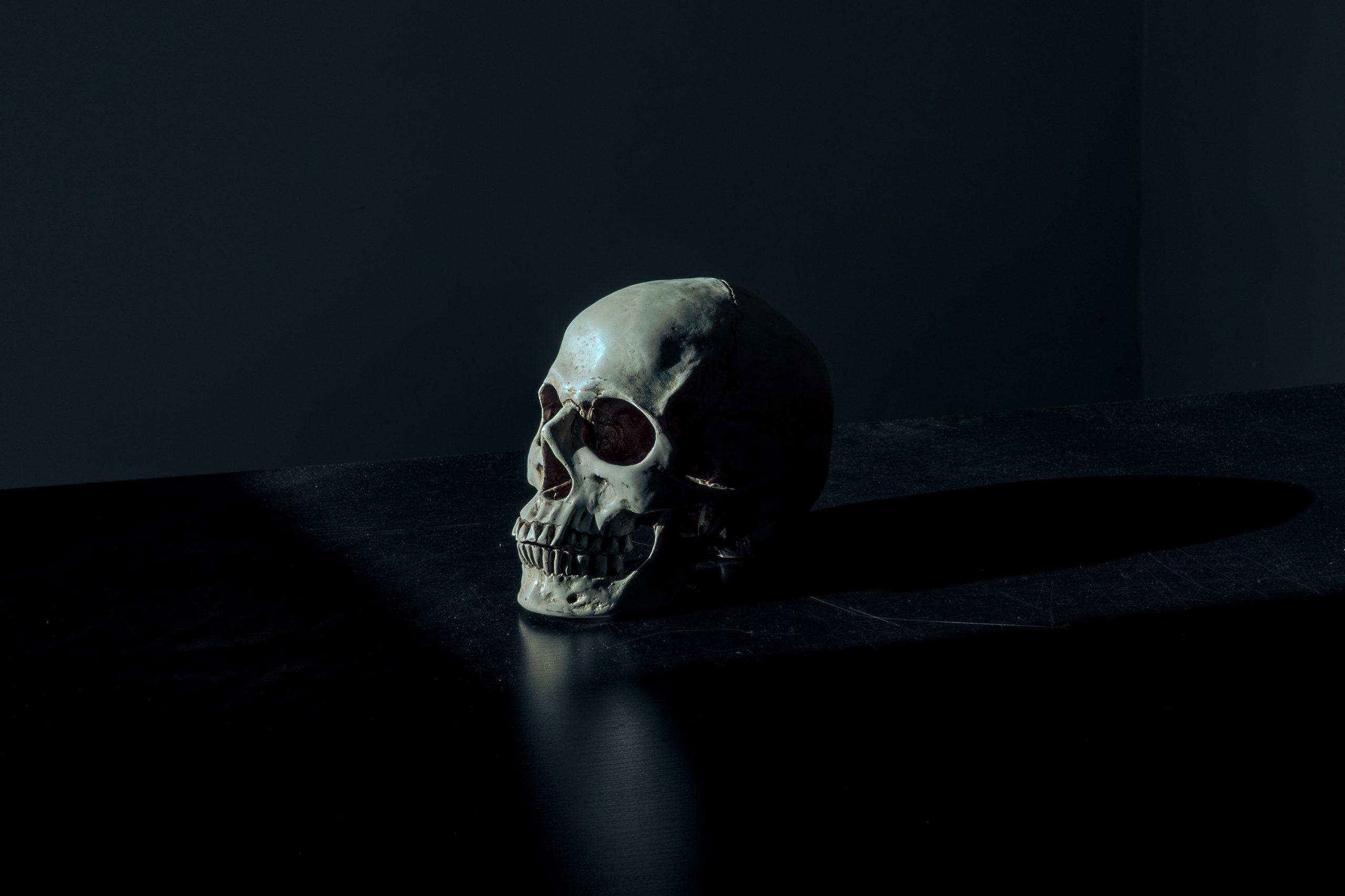 wallpaper White and black skull figurine on black surface