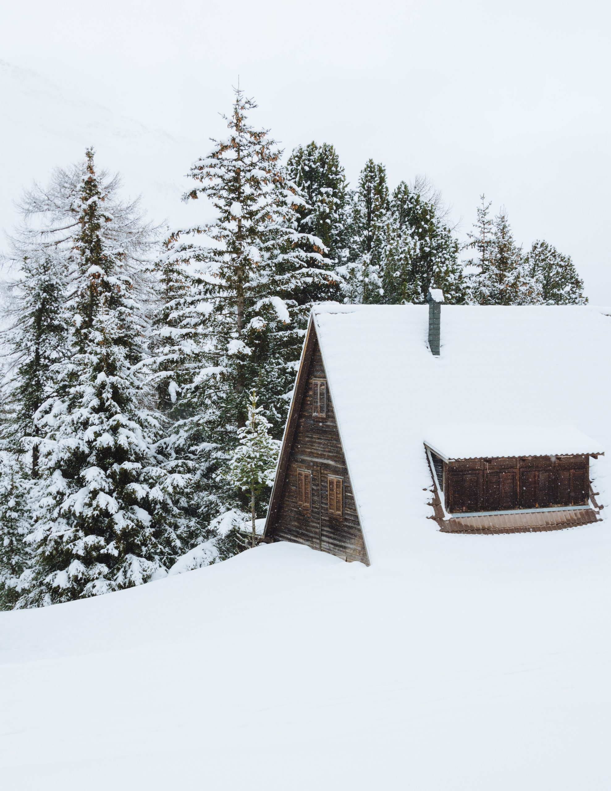 wallpaper Brown cabin covered of snow beside trees at daytime