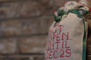 Free Christmas bag