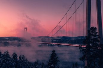 Grey full-suspension bridge photography during daytime