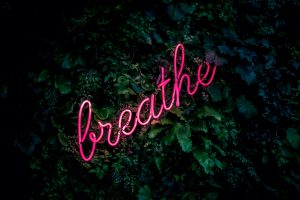 Pink breathe neon sign wallpaper