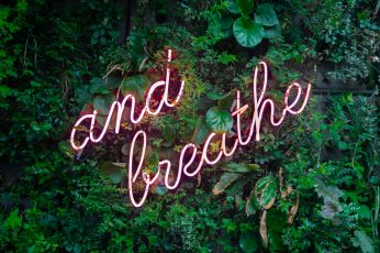 And breathe neon sign on a tree