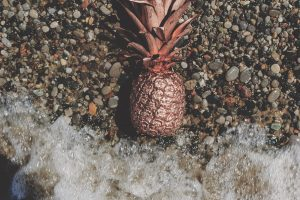 Pink pineapple on grey gravel near body of water