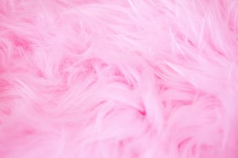 Soft and fluffy pink wallpaper