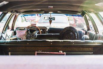 Black and white stripe shirt sitting on car seat