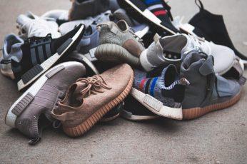 Adidas sneakers Wallpaper