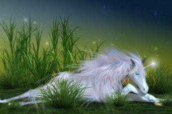 Chill Unicorn