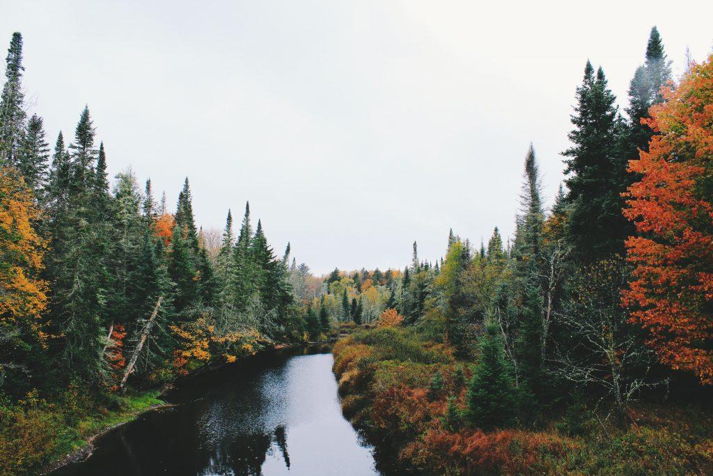 20 Nature Wallpaper Fall Desktop Backgrounds