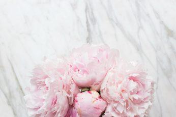 Flowers bouquet marble wallpaper pink peonies tender