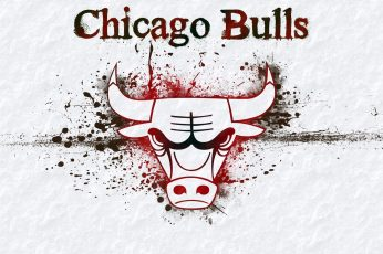 Chicago Bulls wallpaper, logo, grass, nba, basketball