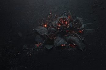 Wallpaper black rose illustration, ash, burning, abstract, dark, flowers