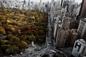 Wallpaper Central Park, New York photo, buildings aerial photography, architecture