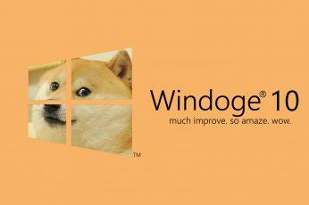 Windoge 10 logo, Microsoft Windows, Windows 10, memes, text, colored background