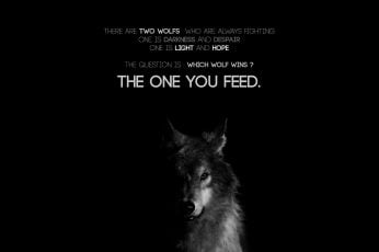 Wallpaper wolf digital wallpaper, quote, animal, domestic animals, mammal
