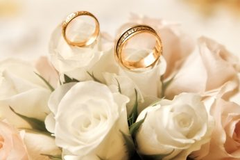 Wallpaper Engagement rings, roses, white flower buds, gold wedding band, white roses