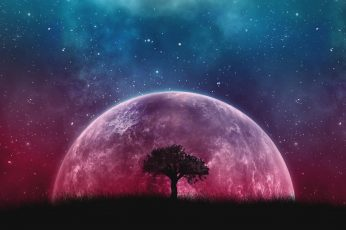 Wallpaper tree, universe, digital art, sky, artwork, supermoon, fantasy art