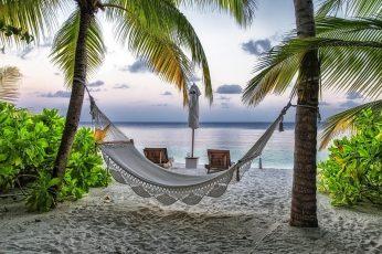 White hammock, landscape, hammocks, palm trees, tropical, sea wallpaper