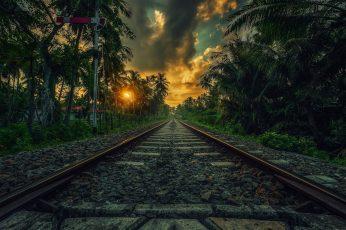 Train railway wallpaper, nature, landscape, sunset, palm trees wallpaper