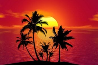 Palms, silhouette, palm tree, sunset, red sky, red sunset, tropics wallpaper
