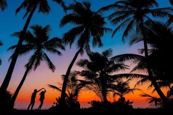 Palm tree, silhouette, romantic, couple, romance, sunset, tropics wallpaper
