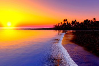 Beach,  tropics, sea, sand, palm trees, sunset wallpaper