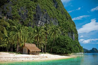 Brown hut and coconut trees, beach, tropical, nature, summer wallpaper