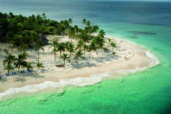 Aerial view of coast, landscape, tropical, beach, palm trees wallpaper