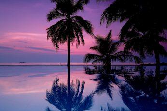 Landscape, tropical, purple sky, palm trees, sea, water, tropical climate wallpaper