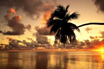 Hawaii, beach, sunset, landscape, clouds, sea, nature, photography wallpaper