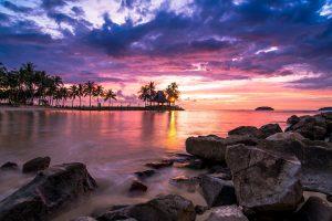 Coconut trees, nature, landscape, sunset, tropical, beach, clouds wallpaper
