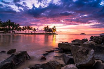 Coconut trees, nature, landscape, sunset, tropical, beach, clouds wallpaper