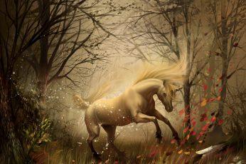 Unicorn wallpaper HD, white horse image, fantasy