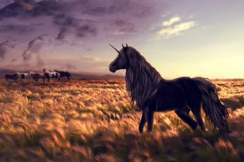 black unicorn wallpaper of wheat field digital wallpaper, horse, golf, art