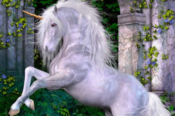 Animal, horse, magical, unicorn wallpaper