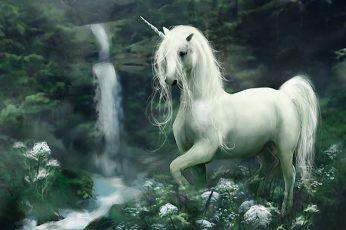 white unicorn wallpaper, Fantasy Animals, animal themes, one animal, mammal