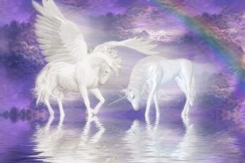 Animal, horse, magical, pegasus, unicorn wallpaper