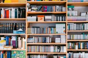 Bookshelf with books and cds, background, bookcase, bookstore wallpaper