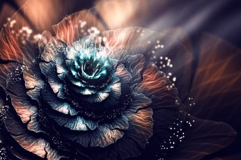 Blue and brown flower 3D wallpaper, abstract, fractal, fractal flowers wallpaper