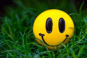Yellow emoji ball wallpaper, grass, macro, smile, smiley, plant, close-up