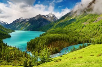 Photo of green trees and body of water wallpaper, nature, landscape, mountains