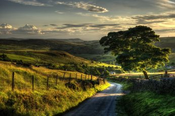 Landscape nature painting wallpaper, sunset, villages, road, field, grass