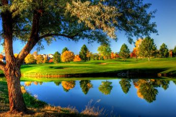Green leafed trees wallpaper, green grass lawn, nature, landscape, fall