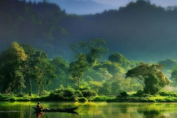 Green leafed tree wallpaper, nature, landscape, mist, forest, river, mountains