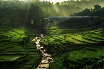 Hill landscape wallpaper, nature, rice paddy, river, sun rays, field, terraces