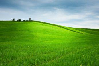 Hill wallpaper, Grass, Trees, Landscape, Nature, Field, Green