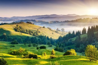 Greenfield with trees wallpaper, nature, hills, mist, landscape, scenics – nature